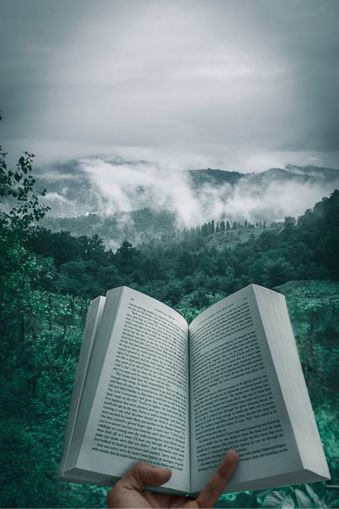 Softcover books income treams