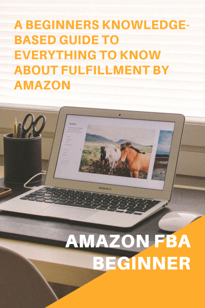 Amazon FBA Beginner